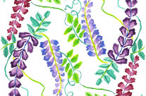Hand-Painted Watercolor Japanese Wisteria Flowers