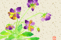 Purple and Yellow Pansies Watercolor Painting with Washi Paper