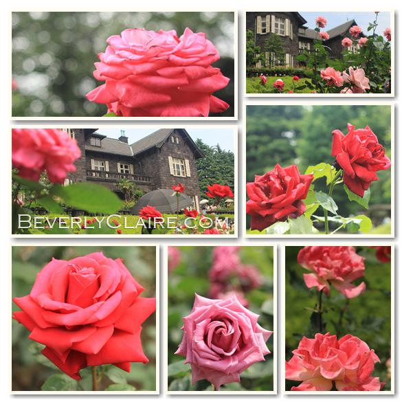 beverlyclairekaiya_kyufurukawateien-rose-garden2_585px