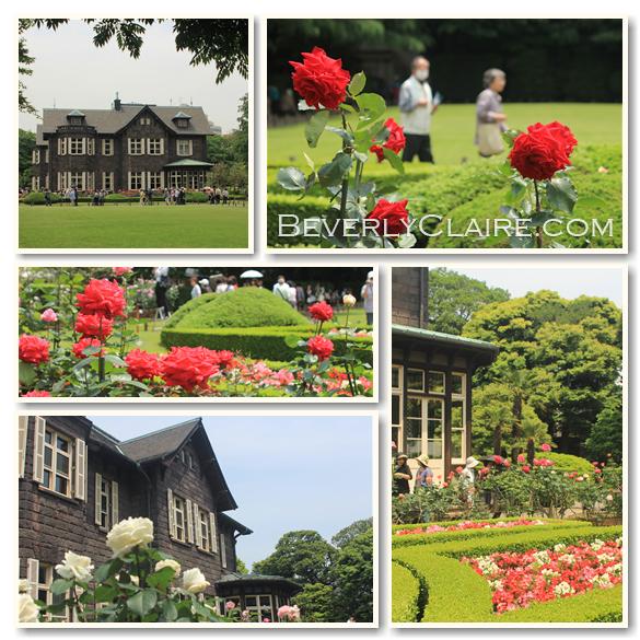 beverlyclairekaiya_kyufurukawateien-rose-garden_585px
